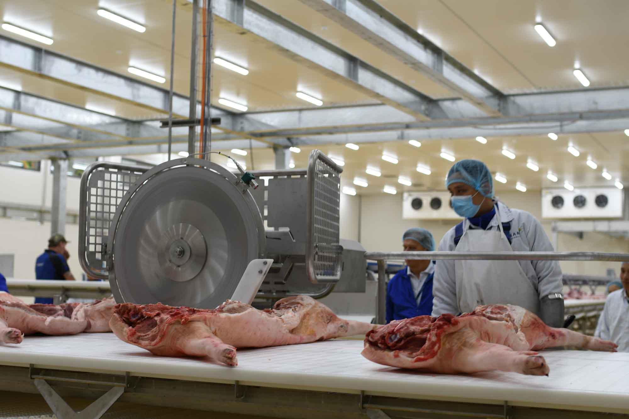 Bình ổn thị trường thịt lợn trong bối cảnh dịch bệnh gia tăng
