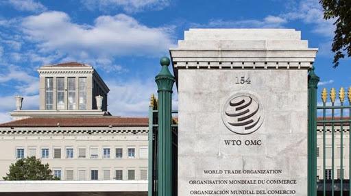 """WTO giữa """"ngã ba đường"""" lựa chọn lãnh đạo"""