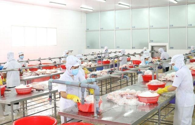 """TP. Hồ Chí Minh: Hơn 600 doanh nghiệp đăng ký thực hiện """"3 tại chỗ"""""""