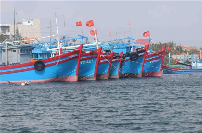 Xử lý nghiêm tổ chức, cá nhân đưa tàu cá, ngư dân Việt Nam đi khai thác trái phép ở nước ngoài