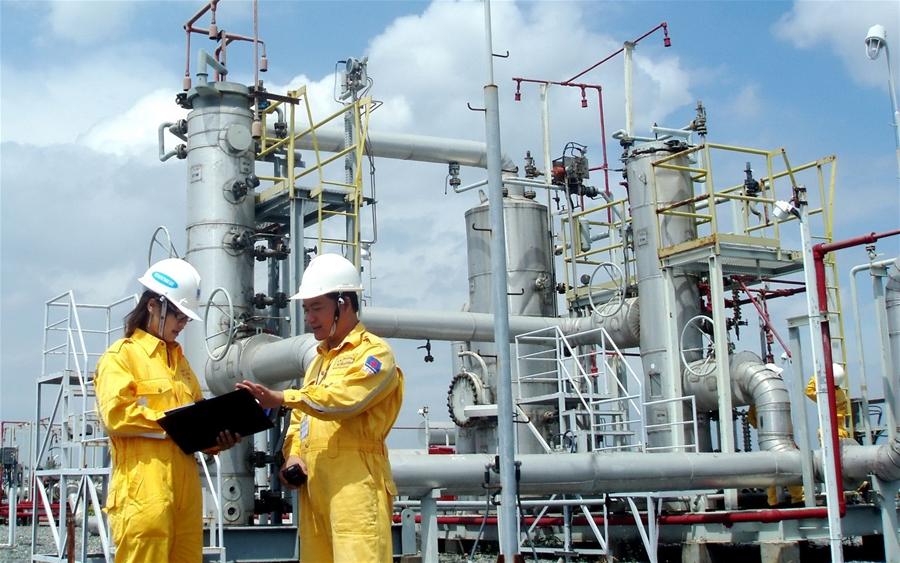 Các dự án khí Nam Côn Sơn 2 và Hàm Rồng - Thái Bình:  Nhiều thiếu sót, hạn chế ảnh hưởng đến hiệu quả thực hiện