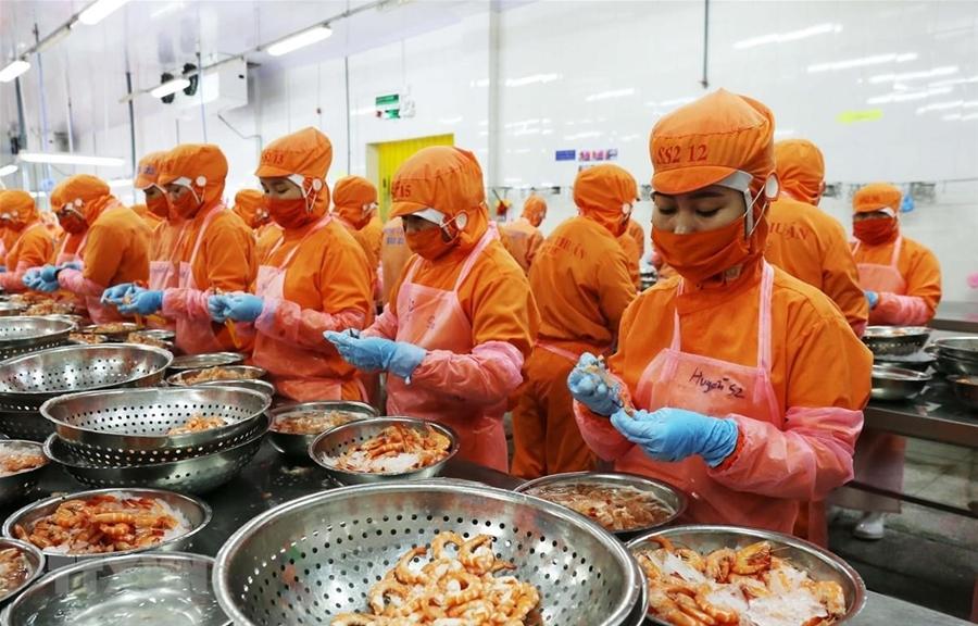CIEM: Kinh tế Việt Nam bước vào năm 2021 với nhiều lạc quan