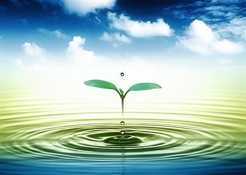 Chung tay Kiểm toán môi trường vì mục tiêu phát triển bền vững